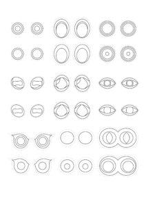 детали глаза для аппликации