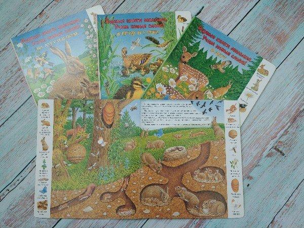 Первые книги малыша Учим первые слова.