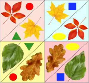 Осенние листья пазл