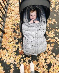 коляска зима лето осень