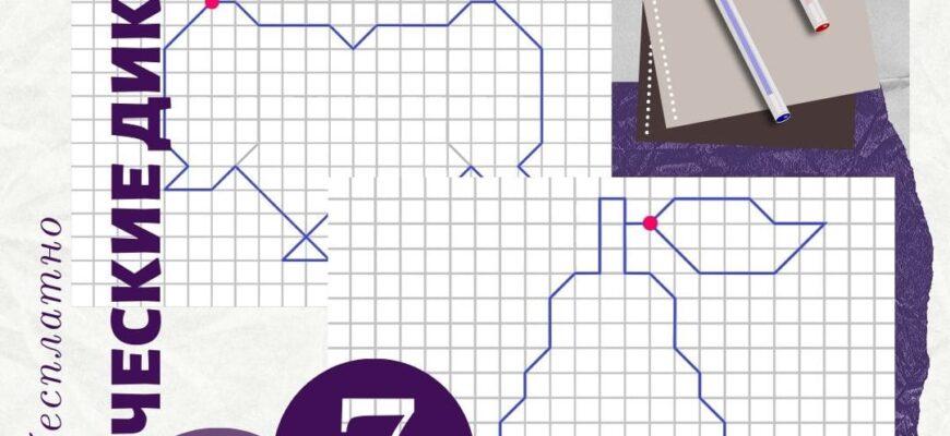 графический диктант по клеточкам скачать бесплатно