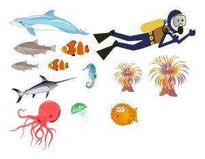"""Игра на употребление предлогов """"Подводные сокровища"""""""