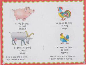 100 первых английских слов и фраз визуальный словарь