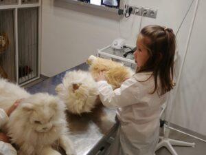 Мастерславль - ветеринарная клиники