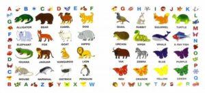 визуальный словарь с наклейками