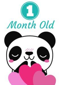 плакат для фотосессии малыша - 1 месяц