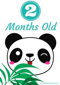 плакат для фотосессии малыша 2 месяца