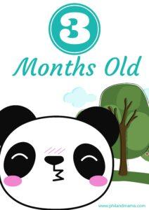 плакат для фотосессии малыша 3 месяца