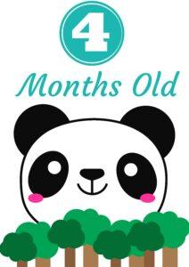 плакат для фотосессии малыша 4 месяца
