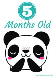 плакат для фотосессии малыша 5 месяцев