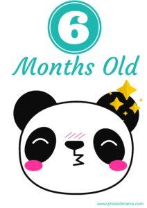 плакат для фотосессии малыша 6 месяцев