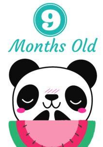плакат для фотосессии малыша 9 месяцев