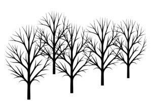 распечатать шаблон осеннего леса