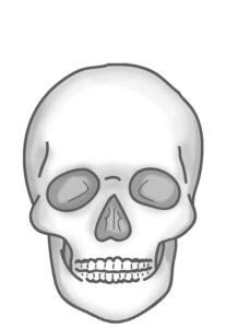распечатать череп