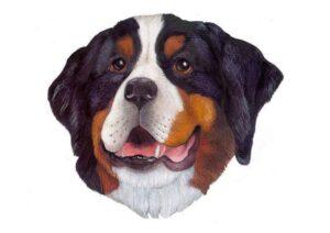 распечатать маску собаки - шаблон для детей