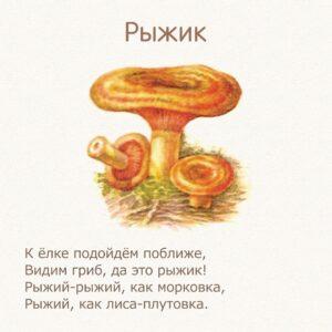 стихи для детей про грибы