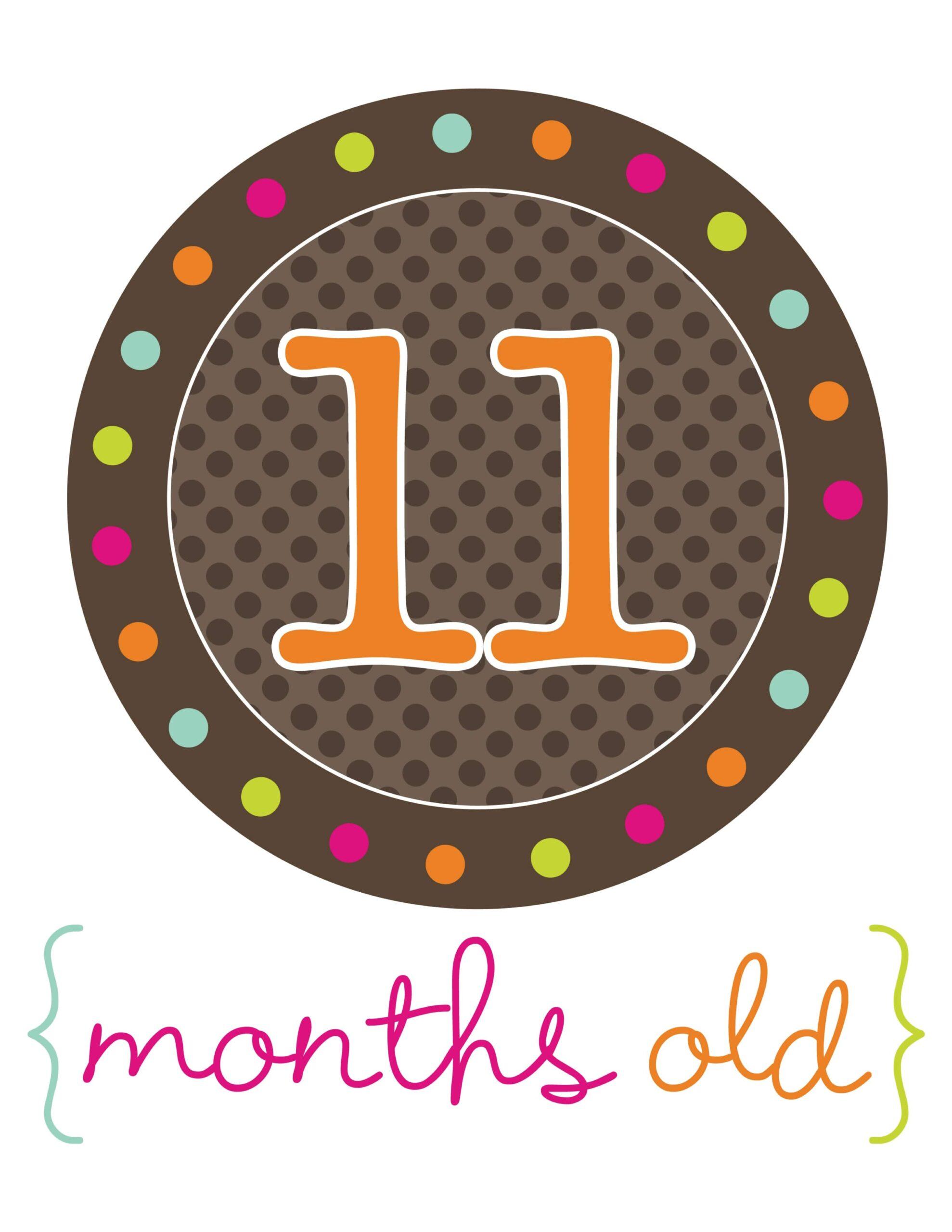 стикер для фотосессий 11 месяцев