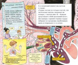 книги по анатомии для детей дошкольного возраста